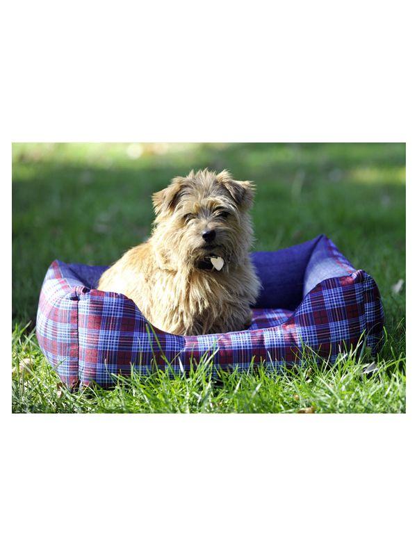 Hondenmand -Jeannie-