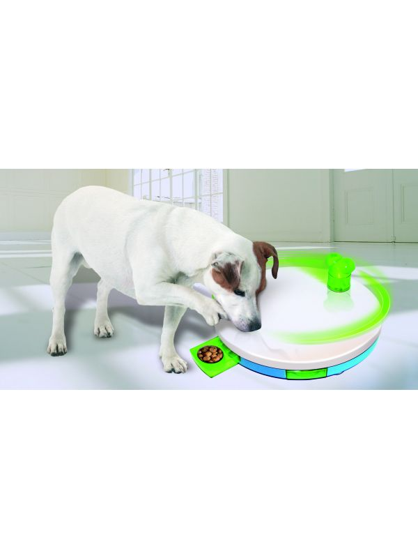 Dog Training Toy, D=27,5cm/H=4cm