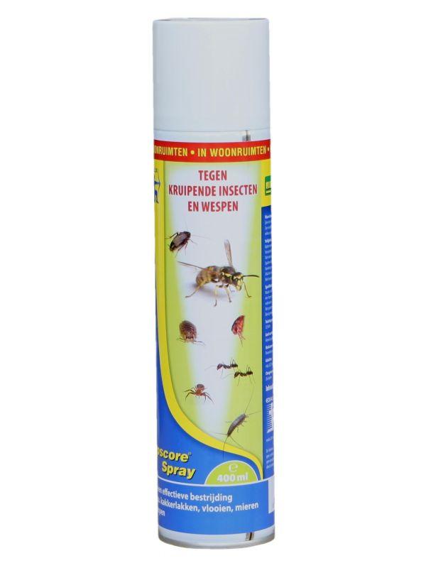 Topscore Kruipende insecten