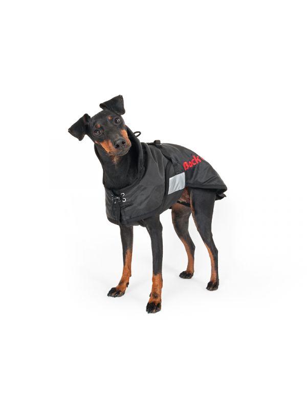 Hondendeken